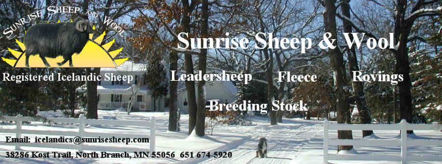 Welcome to Sunrise Sheep & Wool